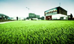 Gemeente Hellendoorn wil investeren in drie non-infill-velden